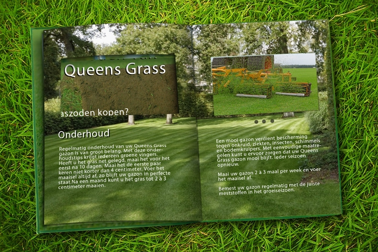videobook-5inch-screen-Queensgrass